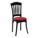 Swagath Affair Deluxe Plastic Cushioned Chair Without Arms
