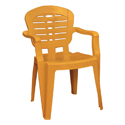 Swagath Plastic Chair With Arms SW-1602