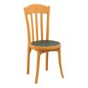 Swagath Plastic Chair Without Arms Luxury